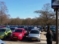 Utrecht wil ook pandaparkeerplaats in Wageningen