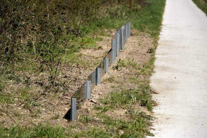 De proefopstelling met de hekjes. Foto: Gerard Verschooten
