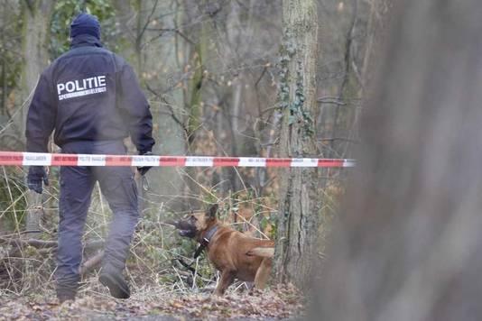Met honden wordt gezocht naar sporen.