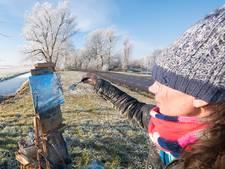 Alphense kunstenares schildert zonsopkomst Aarlanderveen