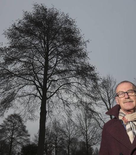 Actie voor behoud van een boom in Zevenaar