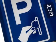 D66 Den Bosch: 'Verschil parkeerkosten garage en straat is veel te groot'