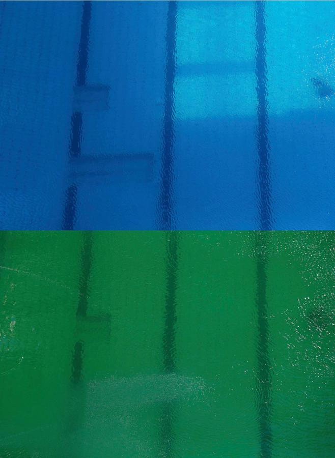 Schoonspringbad slaat groen uit foto - Groen behang van het water ...