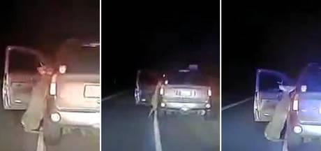 Vrouw komt met schrik vrij als hert in auto wil klimmen