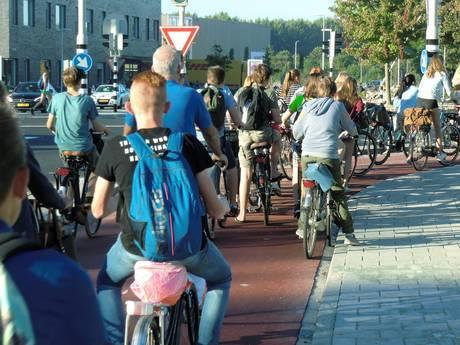 Culemborgs verkeerslicht geeft slechts vier seconden groen