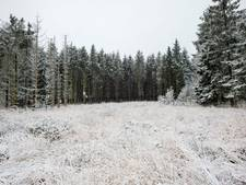 Het sneeuwt in de Alpen en bij onze buren