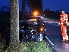 Auto rijdt tegen boom bij Poortvliet