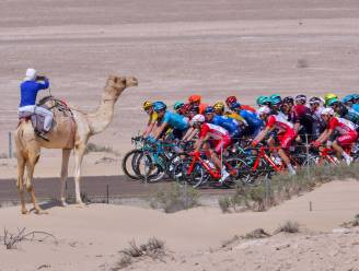 KOERS KORT. Alle 19 WorldTour-teams en Fenix-Alpecin present in UAE Tour - Pidcock start in Vlaamse openingsweekend