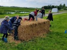 Kinderen en ouders bootcampen tussen de koeien in Bunschoten