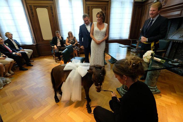 Een knuffelpaardje bracht de ringen van Rudi Van Lent en Nadine Bruelemans.