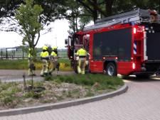 Brandweer Beek gealarmeerd door hevig gekraak van afgebroken boomtak