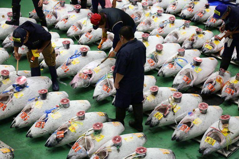 Tonijnveiling op de Toyosu vismarkt in Tokio.  Beeld EPA
