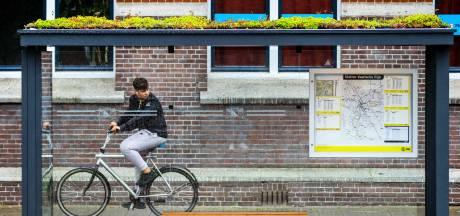 Meierijstad krijgt bushokjes met mini-tuintjes op het dak