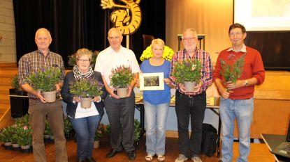 Deelnemers verfraaiingswedstrijd krijgen plant