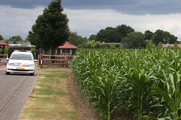 De politie hield twee verdachten aan in een maisveld.