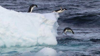 Hoe kan het ijs zelfs op de koudste plek op aarde smelten?