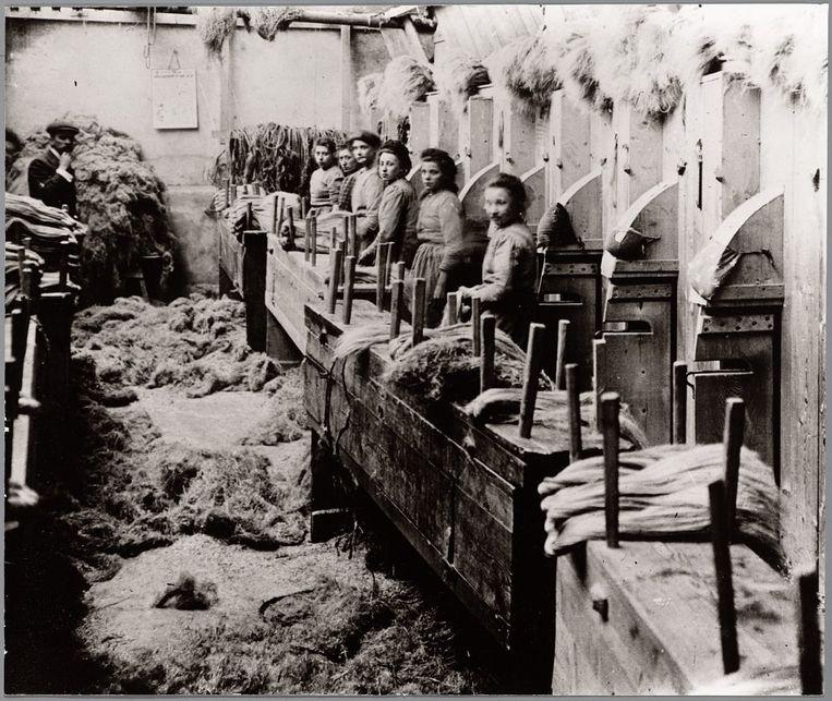 Het boek besteedt ook aandacht aan het arme Vlaanderen en de kinderarbeid die hier massaal voorkwam. We zien hier rond 1900 kinderen aan het werk in de vlasindustrie in de Leiestreek.