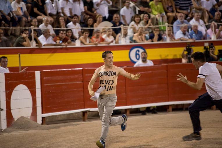 De Nederlander Peter Janssen verstoorde gisteren het eerste stierengevecht van Mallorca in jaren.