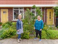 Schutting? Deze buurvrouwen in Zutphen delen hun voortuinen juist: 'Mensen blijven staan om te kijken'