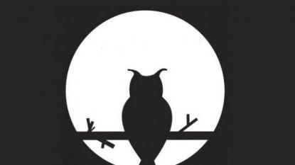 Zwijndrecht dooft klemtoonverlichting tijdens Nacht van de Duisternis