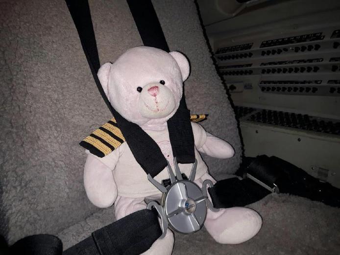 De beer van Summer kreeg de vlucht van zijn leven.