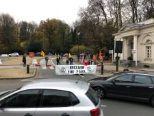 L'action d'Extinction Rebellion au bois de la Cambre