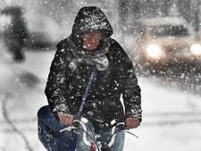 Zo beleefde Zeeland deze sneeuwdag