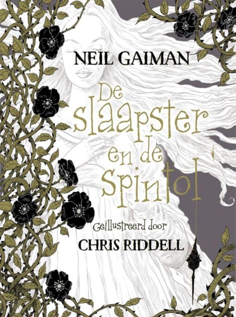 De slaapster en de spintol van Neil Gaiman.