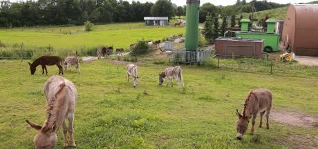 Vuilstort De Langenberg heeft nog stroom over