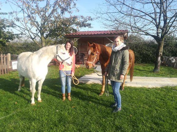 Paardencoaches Mira en Sara