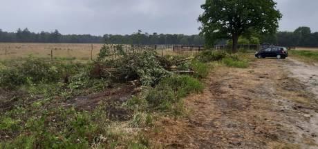 Natuurclubs woedend op gemeente Landerd over maai- en kapwerk in Maashorst