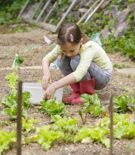 Je tuin onderhouden in tijden van waterschaarste? Zo pak je het aan