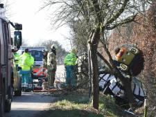 Versierde auto knalt frontaal op boom in Odijk