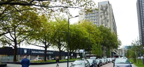 Onenigheid over platanenkap bij Delftseplein: zijn ze nu wel of niet monumentaal?