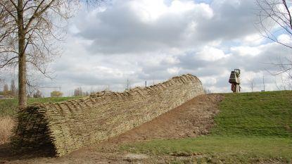 Nieuw in de Polders van Kruibeke: dertig meter lange wilgentunnel