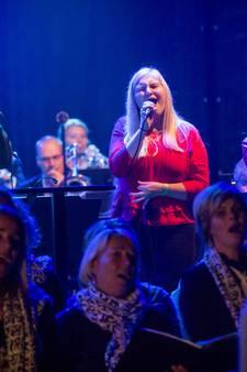 Bezoekers verwend met non stop live muziek in Harbrinkhoek