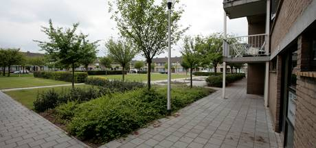 Helmond-Oost houdt quiz over wijk