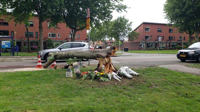 Bloemen bij de plek van het noodlottige ongeval in Zwolle.