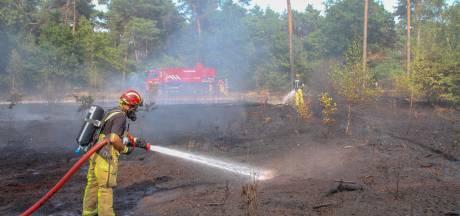 Bosbrand in naaldbomenbos in Vlierden