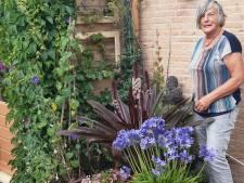 Ida vindt het heerlijk in haar tuin in Wateringen: 'Een plant zaaien en zien groeien blijft een wonder'