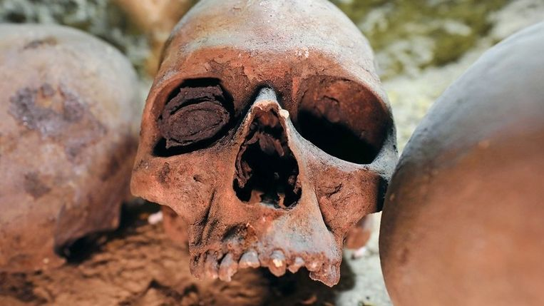 2000 jaar oude mummies ontdekt in Egypte