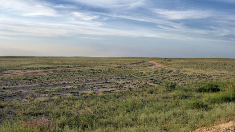 De Kazachse steppe. Beeld thinkstock