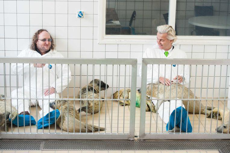 Geert Wilders en Dion Graus knuffelen pups in de zeehondencrèche van Lenie 't Hart. Beeld ANP