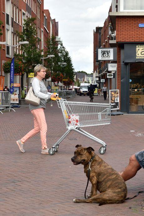 Klachten over zakpalen Gouweplein vindt college onterecht: 'Ze werken perfect'