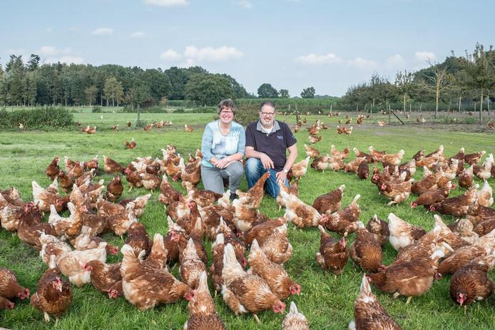 Wim en Marja de Vries uit Terschuur wachten al maanden op het moment dat hun eieren fipronilvrij zijn.