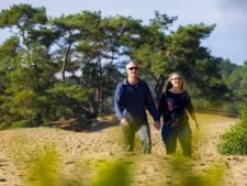 Nul toeristen in duikresorts van Waalwijks echtpaar, wel 82 medewerkers