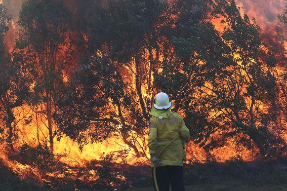 Een brandweerman aan het werk in New South Wales.