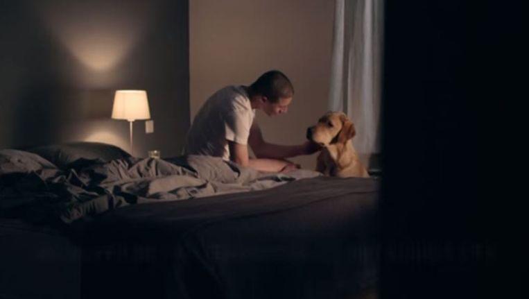 Buddyhond Commercial 2014 van KNGF Geleidehonden. Beeld -