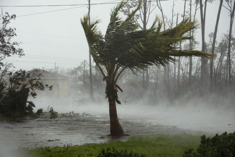 Freeport, Grand Bahama. Beeld AP