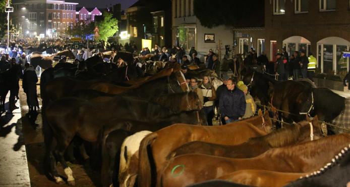 Paardenmarkt Hedel